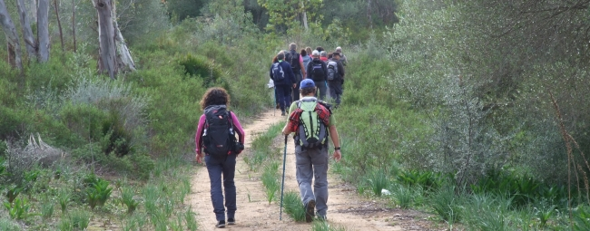 bosco di santo pietro kalura trekking sicilia